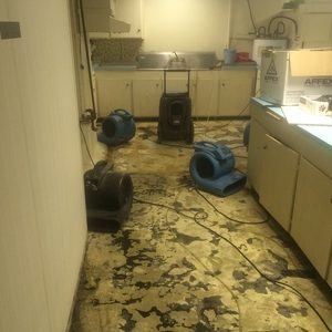 Water Damage Aftermath