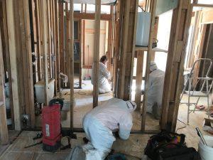 Technicians Conducting Mold Remediation